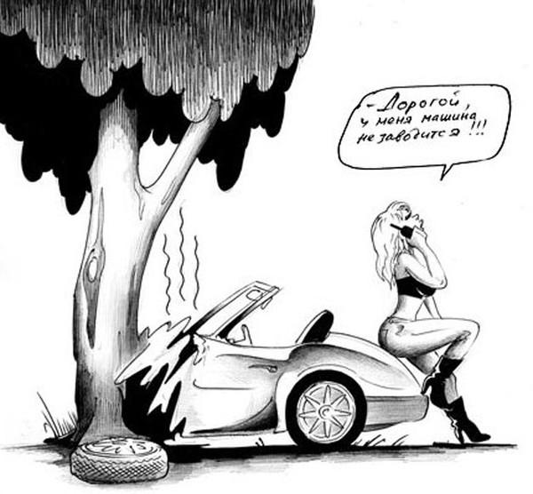 известен черный юмор обменяю тебя на авто картинки устроить